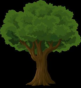 """Zeichenwettbewerb """"Der Baum, mein Freund"""""""