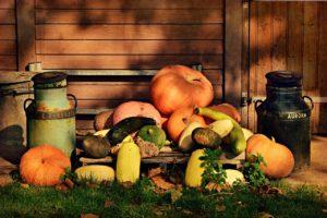 Kreativ: Kulissen für Halloween